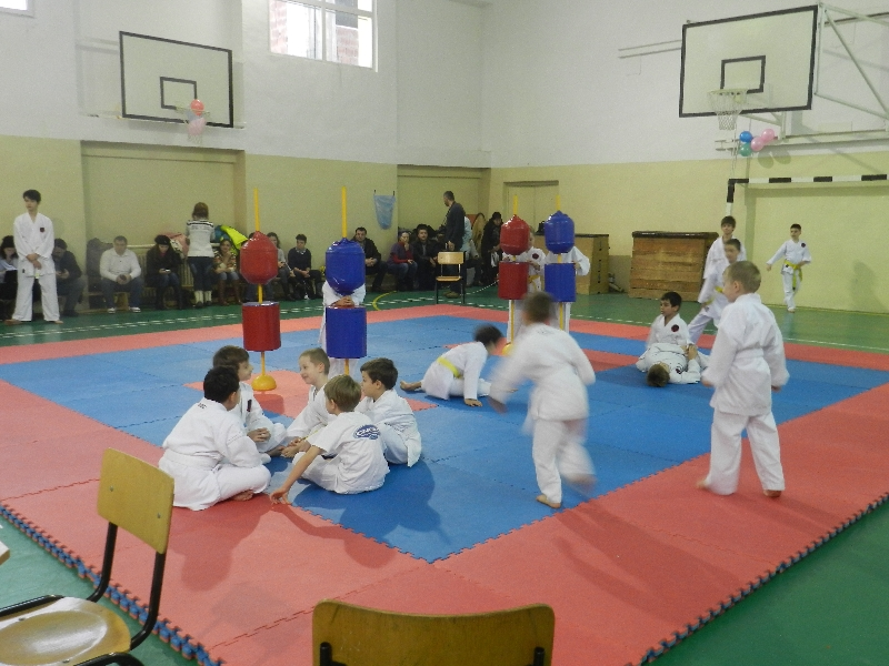 Campionatul National de Karate Goju Ryu 2013