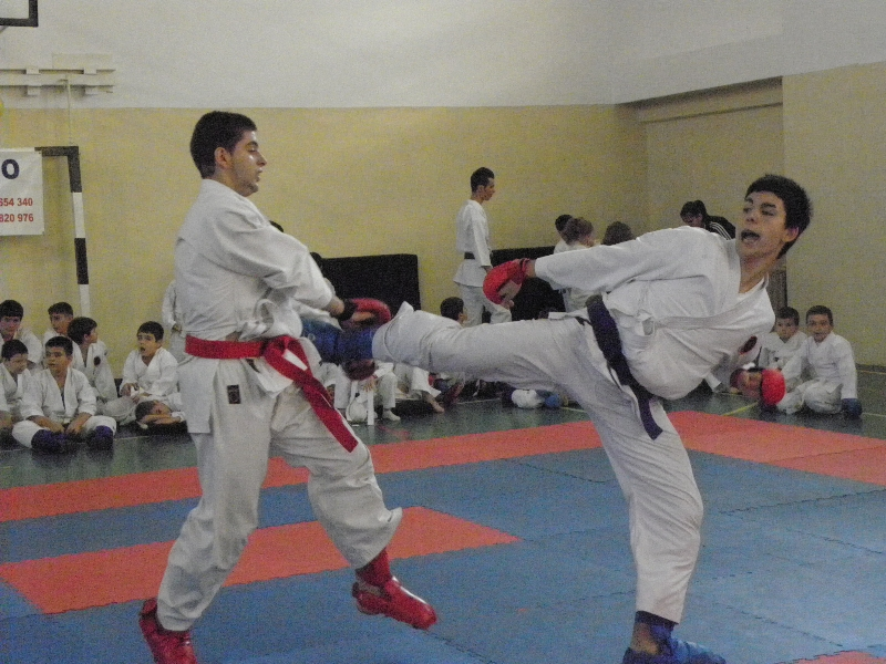 Campionatele nationale de karate interstiluri 2012