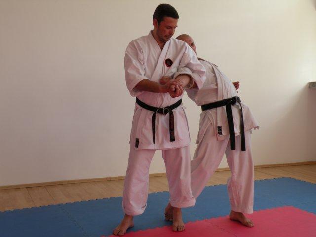 Victor Panasiuk in Romania karate goju ryu (13)