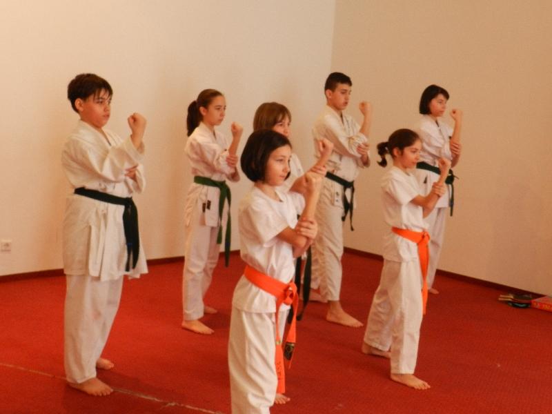 stagiu pregatire karate bucuresti 2013mar (9)